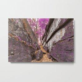 Gettysburg Grotto - Lavender Fantasy Metal Print