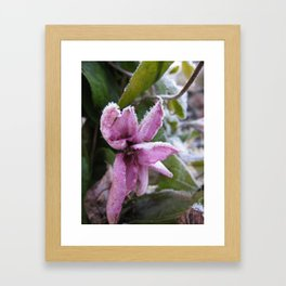 Frozen flower Framed Art Print
