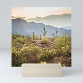 The View at Salt River Mini Art Print