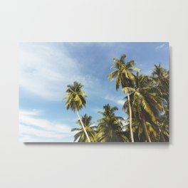 Palms Trees on the San Blas Islands, Panama Metal Print