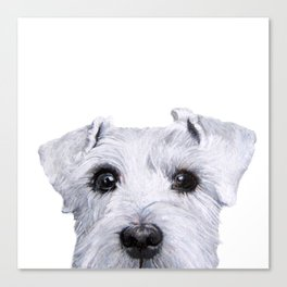 Schnauzer White Dog original painting print Canvas Print