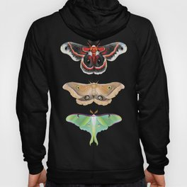 Giant Silk Moths - Digital Painting Hoody