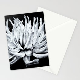 Floating Stationery Cards