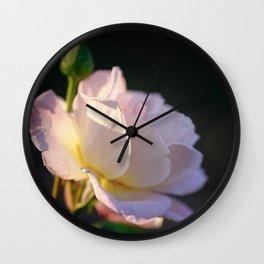 Garden Rose at Sunset Wall Clock