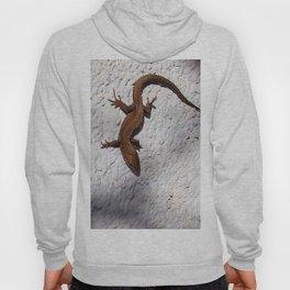 lizard 157 Hoody