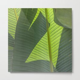 Green Tropical Leaves: Sunlight and Shadows Metal Print