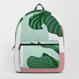 Big Fig Backpack