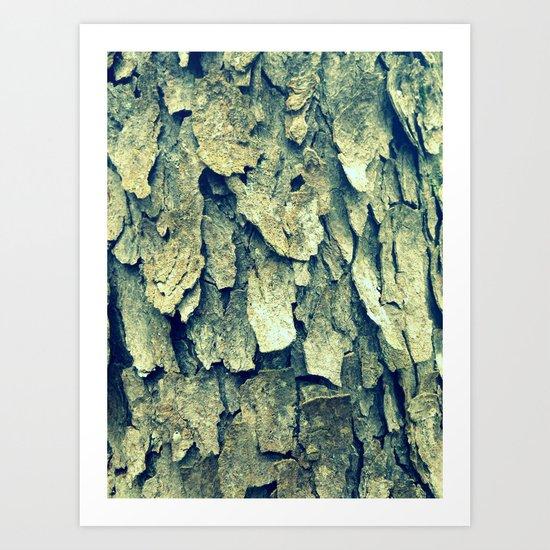 Tree Skin Art Print