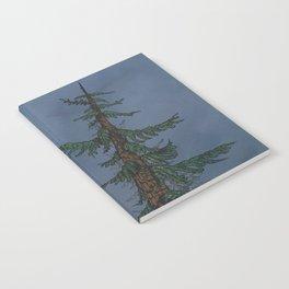 Forest Moonlight Notebook
