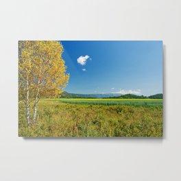 Fall Landscape Metal Print