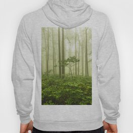 Dreaming of Appalachia - Nature Photography Digital Landscape Hoody