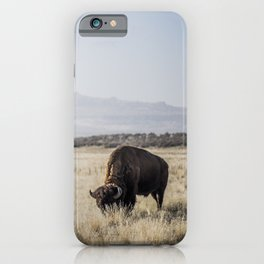 Bison Grazing iPhone Case