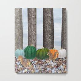 fox squirrels, heirloom pumpkins, & acorns Metal Print