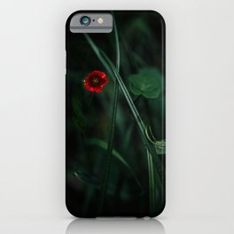 Beautiful red flower iPhone Case