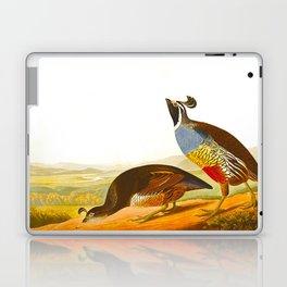Scientific Bird Illustration Laptop & iPad Skin