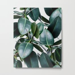 Tropical Elastica Metal Print