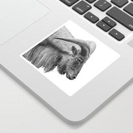Minimalism Animal Photography | Mountain Goat | Black and White Minimal Art Sticker