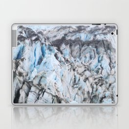 Glacier Bay National Park Alaska Wilderness Laptop & iPad Skin