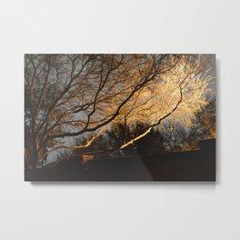 Low Exposure Street Light Illumination Metal Print
