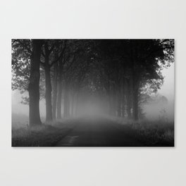 Avenue of trees in the fog white black Canvas Print