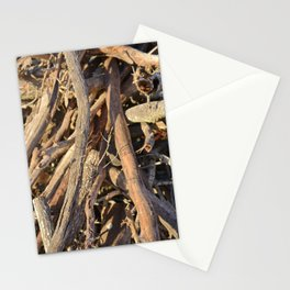 #22 Stationery Cards