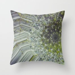 °//*Substantiated ¤ {In D/eams} ¤ •f Sp/ing°//* V.2.01 Throw Pillow