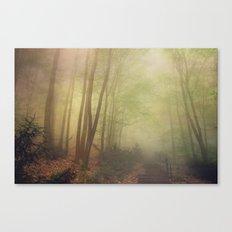 mellow morning Canvas Print