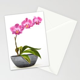 Watercolor Orchid Stationery Cards