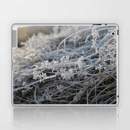 Frosted Laptop & iPad Skin