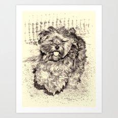 Fluffy Puppy Art Print