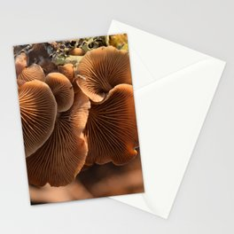 Among the Mushrooms 1 Stationery Cards