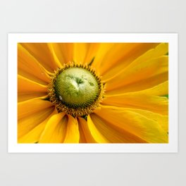 I've got sunshine Art Print
