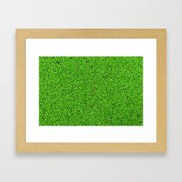 Green grass texture Framed Art Print