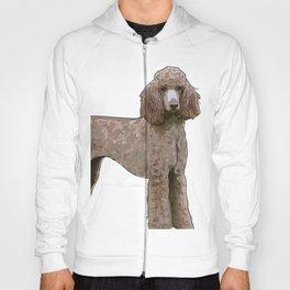 Royal Standard Poodle dog Hoody