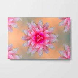 pink dahlia  background Metal Print
