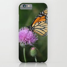 Monarch on Thistle iPhone 6s Slim Case