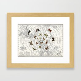The Buttefly Effect - Antarctic Edition Framed Art Print