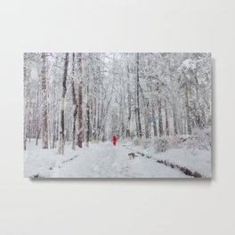 Snowfall in the park Metal Print