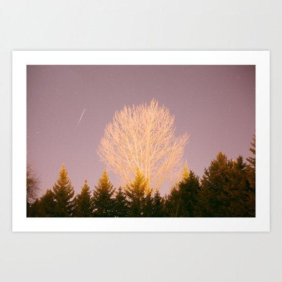 big tree Art Print