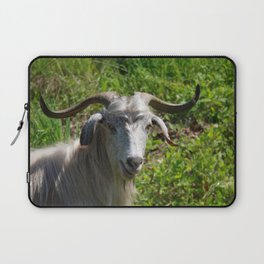 Portrait of A Horned Goat Grazing Laptop Sleeve