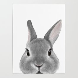 Netherland Dwarf rabbit Grey, illustration original painting print Poster