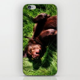 Charlie Bear iPhone Skin