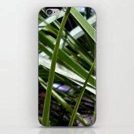 aquatic plants iPhone Skin