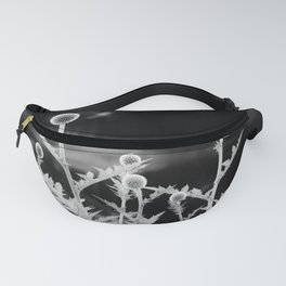 Globe thistle in black and white Fanny Pack