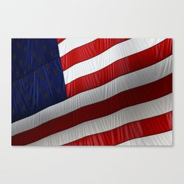 American Presence Canvas Print