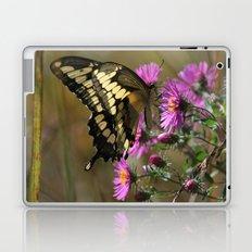 Giant Swallowtail (Papilio cresphontes) Laptop & iPad Skin