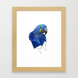 Hyacinth Macaw Blue parrot Birds and animals art Framed Art Print