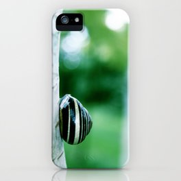 Snail on Silver Birch iPhone Case