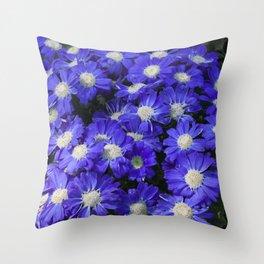Cineraria Blue Throw Pillow