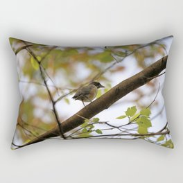 Baby Robin in A Maple Tree Rectangular Pillow